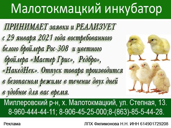 Малотокмацкий 5