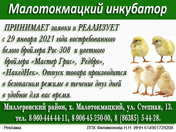 Малотокмацкий 4