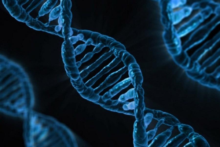 «Жуткие болезни»: Мясников рассказал о вирусе, поразившем 95% людей