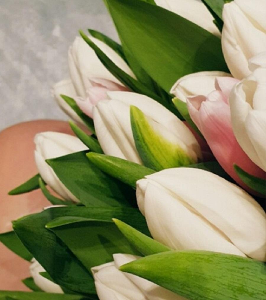 Что добавить в воду, чтобы тюльпаны стояли долго