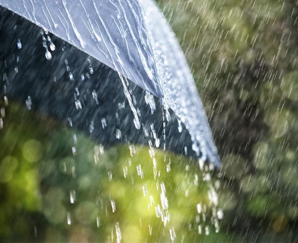 В донском регионе прогнозируется ливень, гроза и шквалистый ветер