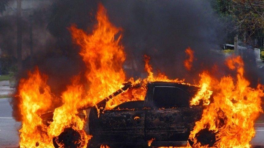 Под Рязанью легковушка сбила лося , вспыхнула и сгорела дотла