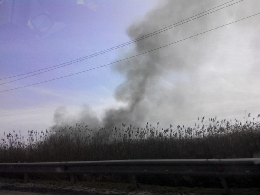 Дончан предупреждают о высокой пожароопасности