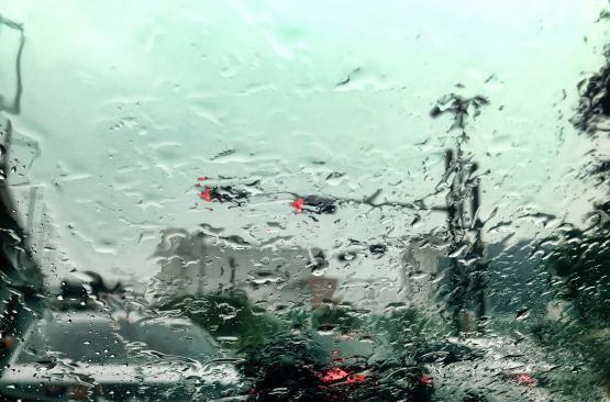 Дождливая неделя ожидает жителей Дона