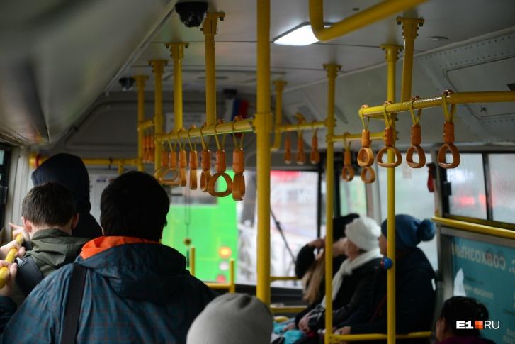 В Лесном автобус насмерть сбил шесть человек на остановке