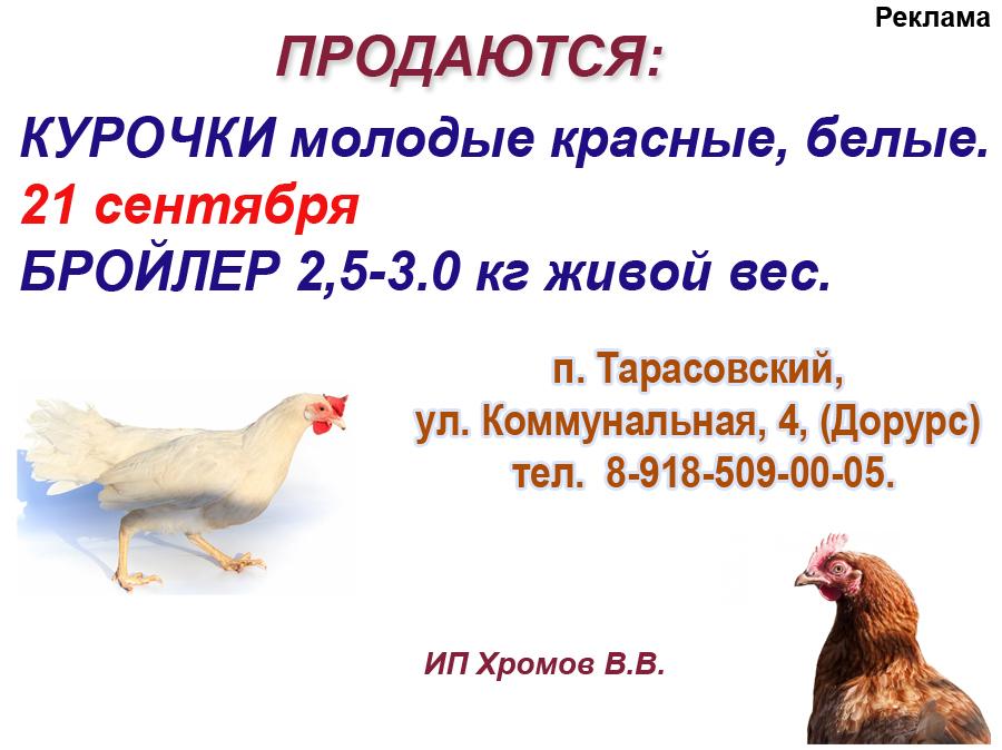 Хромов 9